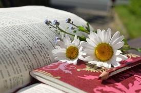 Bücher die dir weiterhelfen
